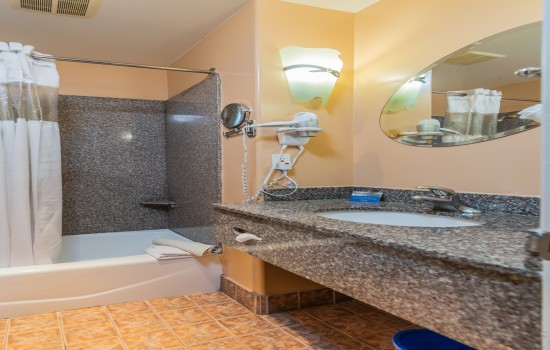 Welcome To The Continental Inn - Standard Queen, Standard King, Standard 2 Queen Bathroom
